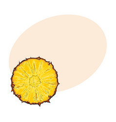 unpeeled round pineapple slice top view sketch vector image