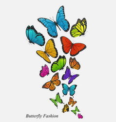background with colorful butterflies illust vector image