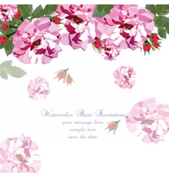 Watercolor Pink Rose flowers card vector image