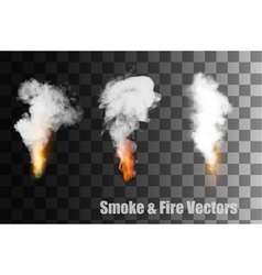 Flames with smoke icons vector image vector image