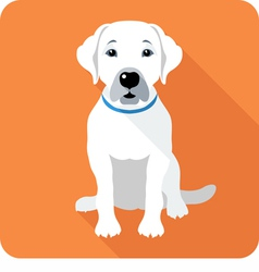 dog Labrador Retriever sitting icon flat design vector image vector image