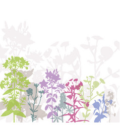 colorful summer floral background vector image vector image