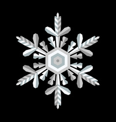 crystal snowflake on a contrast background vector image