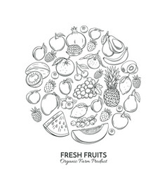 poster round composition with hand drawn fruits vector image