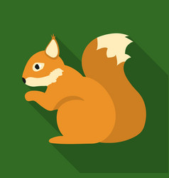 Squirrel icon in flat style for web vector