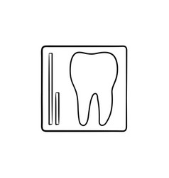 tooth x-ray hand drawn outline doodle icon vector image