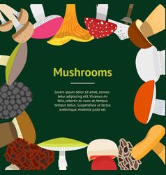 Cartoon mushrooms banner card vector