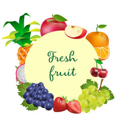 fresh ripe juicy fruits and berries vector image