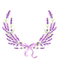lavender flowers decorative element vector image