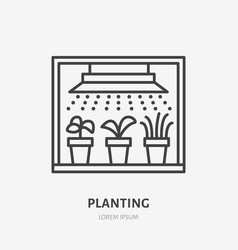 Seedling in grow light flat line icon plants vector