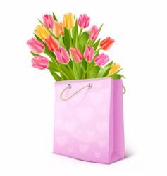 bouquet of tulip flowers bag vector image