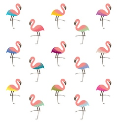 colorful flamingo pattern vector image