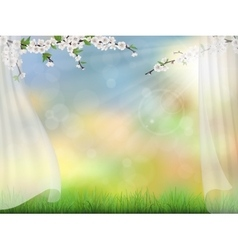 spring background with curtain vector image vector image