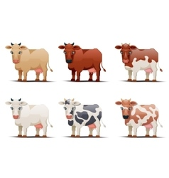 Cows of different colors on white background vector image