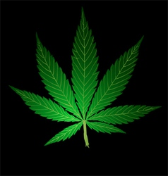 Pot Leaf vector image