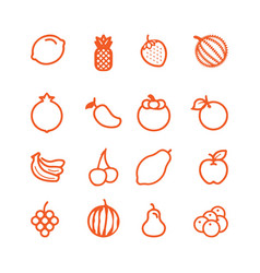 collection isolated fruit outline icons vector image