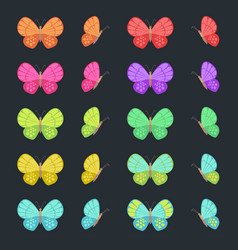 colored butterflies isolated on dark background vector image