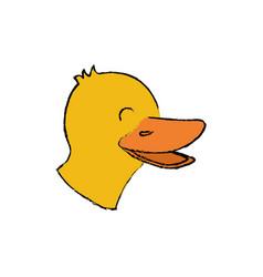 duck farm animal vector image