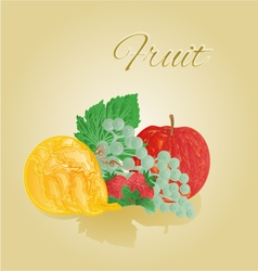 Fruit like woodcut apple pear grapes strawberries vector