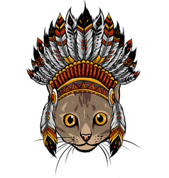 head cat with indian hat vector image