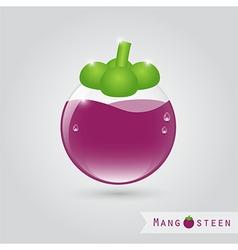 mangosteen fruit juice vector image