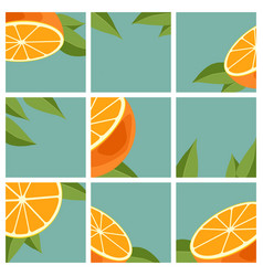 Orange citrus fruit vector