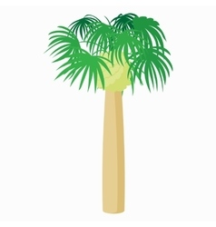 Palm plant tree icon cartoon style vector