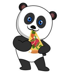 panda eating pizza on white background vector image