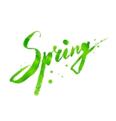 Spring word hand drawn lettering vector