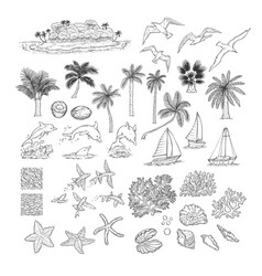 summer set tropical plants and water vector image