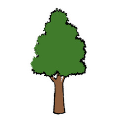 Tree for forest park and garden plant natural vector