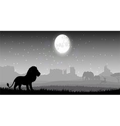 Lion in meadow vector image