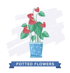 Spring colorful flowers in pots vector image