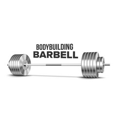 Barbell weightlifting gym sport equipment vector