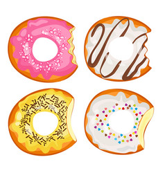 bitten donuts in sweet fruit and chocolate glaze vector image