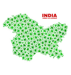 Cannabis leaves mosaic jammu and kashmir state map vector