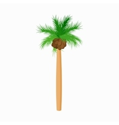 Cocos palm tree icon cartoon style vector