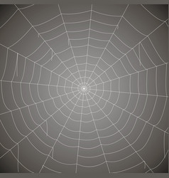 Concentric white web on a gray background vector