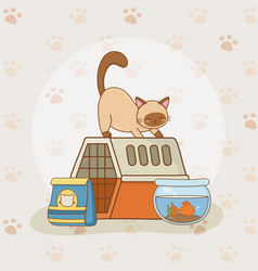 cute little kitty and fish aquarium mascots vector image
