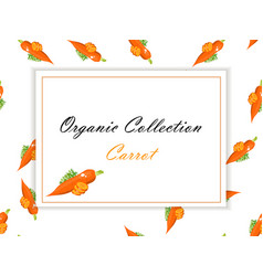 fresh carrot label or sticker vector image