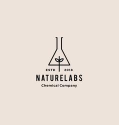 leaf lab nature hipster retro vintage logo badges vector image