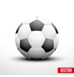 Soccer ball in the traditional two-tone colors vector image