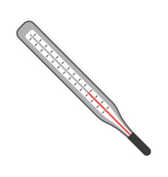thermometer scale measuring icon vector image