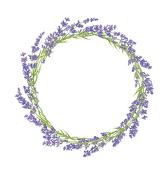 Circle of lavender flowers vector image