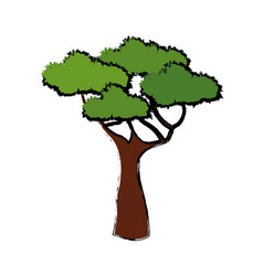tree for forest park and garden plant natural vector image