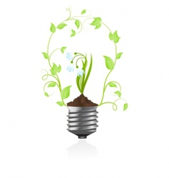 bulb with plant of snowdrop vector image