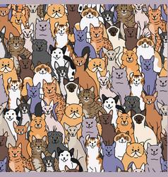 Cats seamless pattern domestic pedigree vector