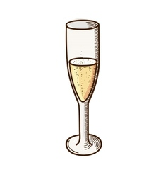 Champagne glass sketch vector