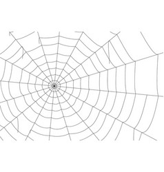 Concentric white web on a white background vector