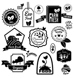 Eco labels black vector image